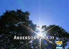 Watch the anderson park movie